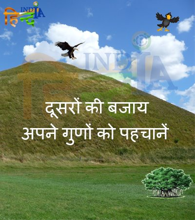 Interesting story in hindi Hawk and Crow funny moral motivational HindIndia images wallpapers Best Hindi motivational blog